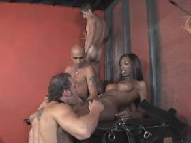 Beautiful black shemale in filthy interracial orgy