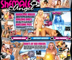 Shemale Angel- the Best Shemales in hot porn action!